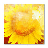Ready2HangArt 'Painted Petals XCVIII' Canvas Art Set