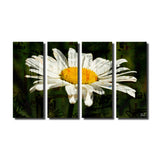 Ready2HangArt 'Painted Petals XCIX' Canvas Art Set