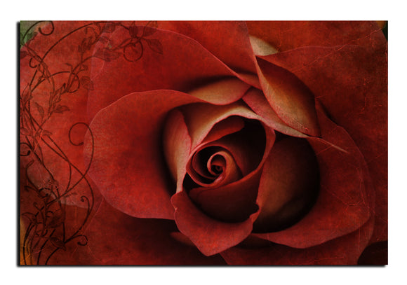 'Roses are Red' Oversized Canvas Wall Art