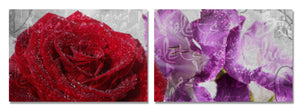 Ready2HangArt 'Roses are Red, Violets are Blue II' Canvas Wall Art (2-Piece)