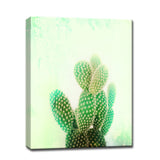 Ready2HangArt™ 'Cactus Cool' Gallery Wrapped Canvas Art
