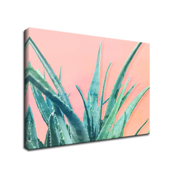 Ready2HangArt 'Aloe Need' Wrapped Canvas Wall Art