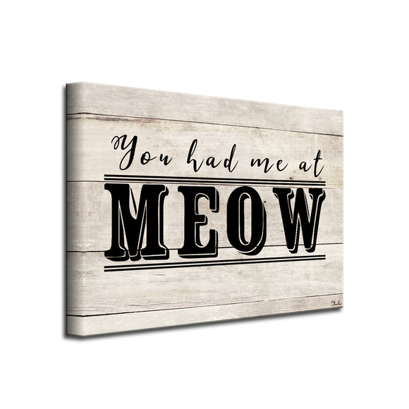 'MEOW' Wrapped Canvas Cat Wall Art