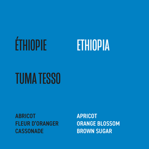 Load image into Gallery viewer, Ethiopia - Tuma Tesso