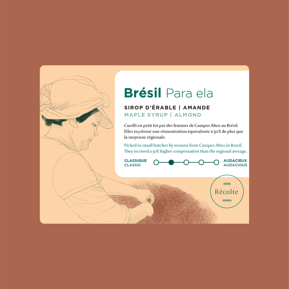 Load image into Gallery viewer, Brazil - Para ela