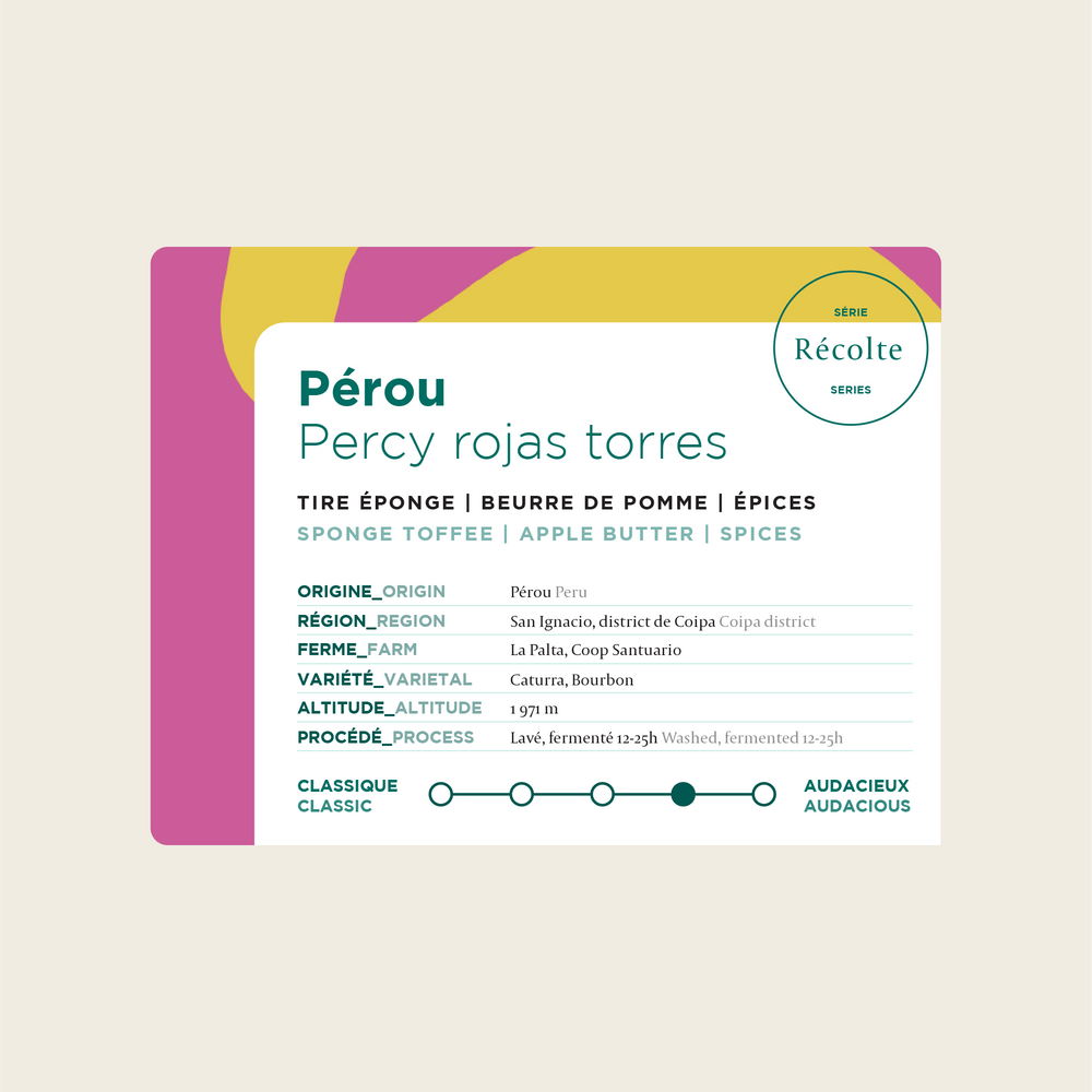 Load image into Gallery viewer, Peru - Percy Rojas Torres