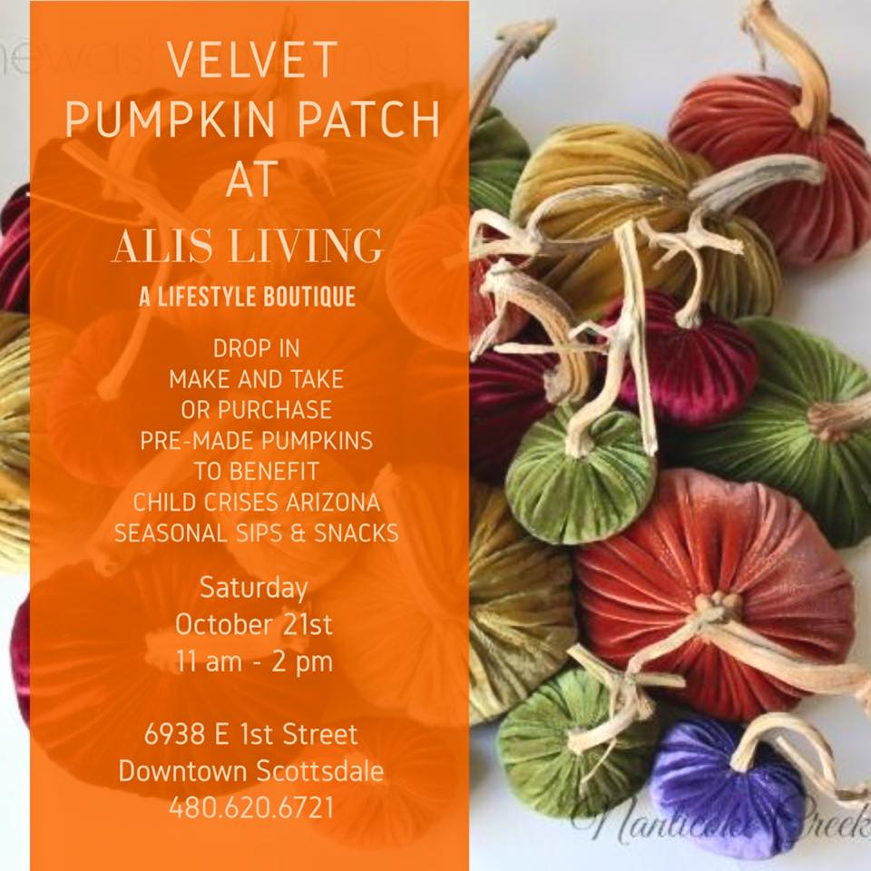 First Ever Velvet Pumpkin Patch Event