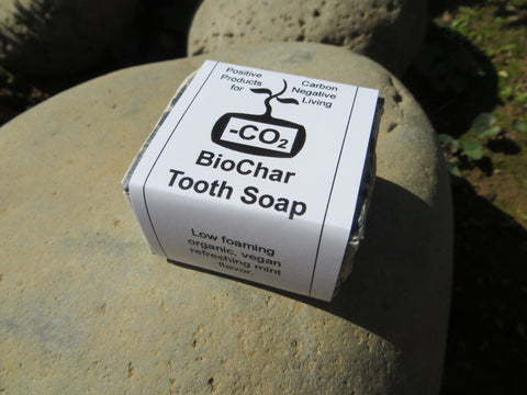 Biochar Tooth Soap