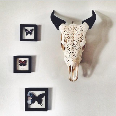 Carved Cow Skull - Tribal 6