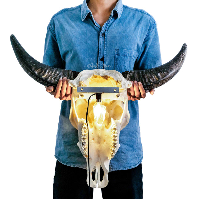 skull-variant-skull-with-lamp