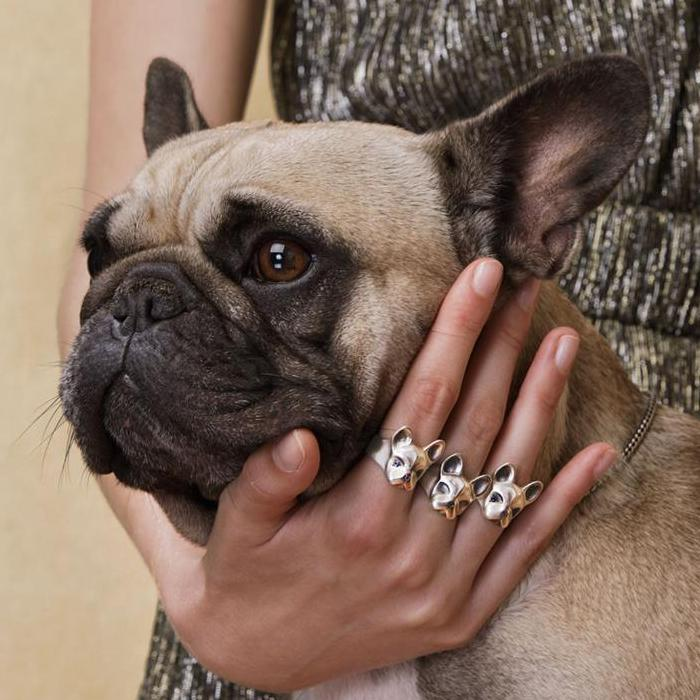 ELINA GLEIZER Jewelry French Bulldog Ring With Fancy Sapphires Setting