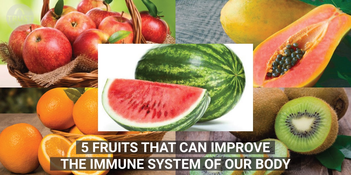 5 Fruits that can Improve the Immune System of our Body