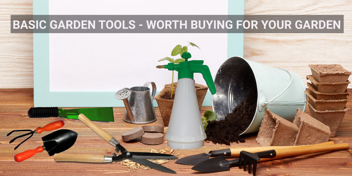 Basic garden tools - worth buying for your garden