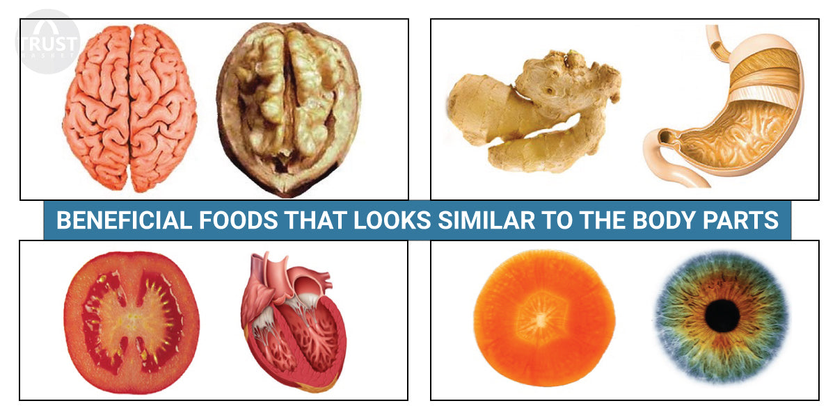 Beneficial foods that looks similar to the body parts