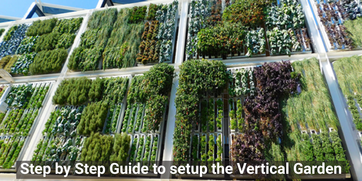 Step by Step Guide to setup the Vertical Garden
