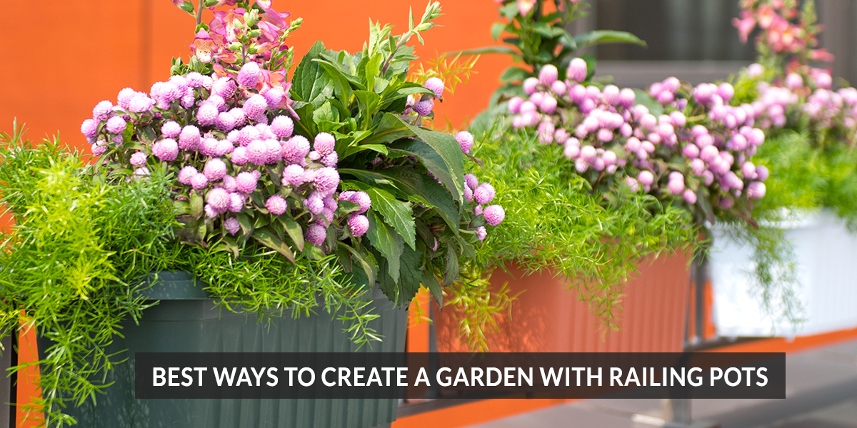 Best Ways to Create a Garden with Railing Pots