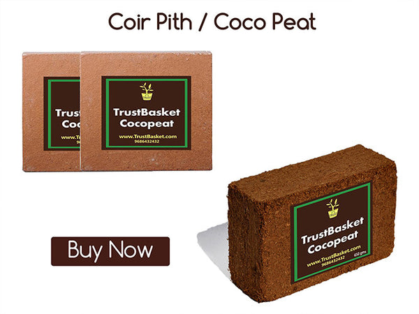 COIR PITH / COCO PEAT