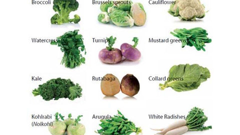 Types of brassicas microgreens that can be growns