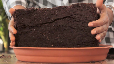 expanded cocopeat - Indoor composter