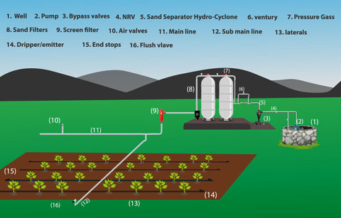 Layout or components of Drip Irrigation System