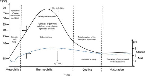 phases of composting