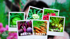 how to select vegetables according to climate