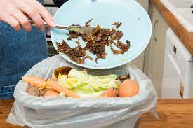 Kitchen scraps as food source to earthworms
