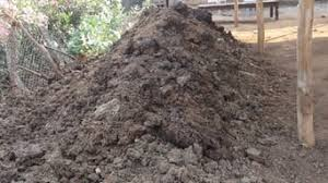 cowdung- vermicomposting