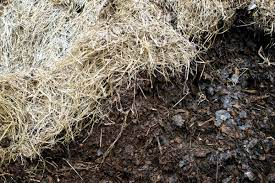 straw for composting