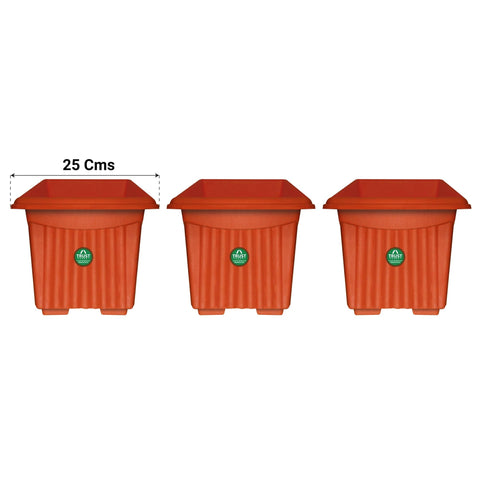 Best Plastic Pots Online - UV Treated  Square Plastic Planter (10 inches)