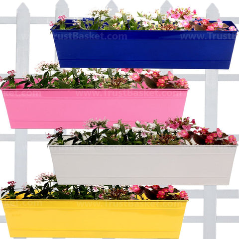 Best Metal Planters in India - Rectangular Railing Planter - Blue, Magenta, Ivory, Yellow (23 Inch) - Set of 4