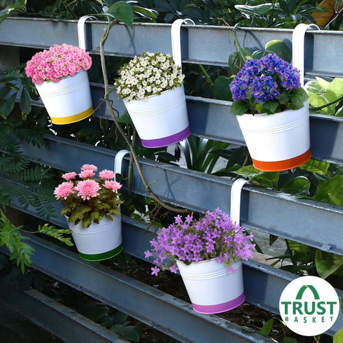 DECORATIVE/CONTEMPORARY PLANT POTS - Crown of Colors Balcony Railing Garden Flower Pots/Planters - Set of 5 (Green, Orange, Pink, Purple, Yellow)