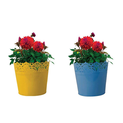 Indoor TableTop Planters - Set Of 2 - Half Lace finish Yellow and Teal