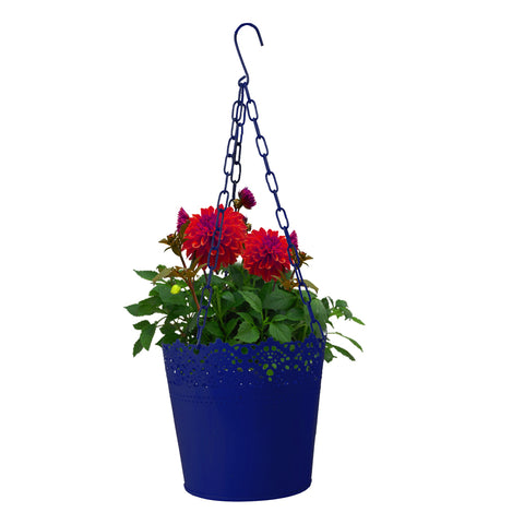Hanging basket Lace Finish Blue