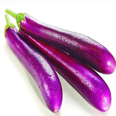 Brinjal long purple seeds (OP)