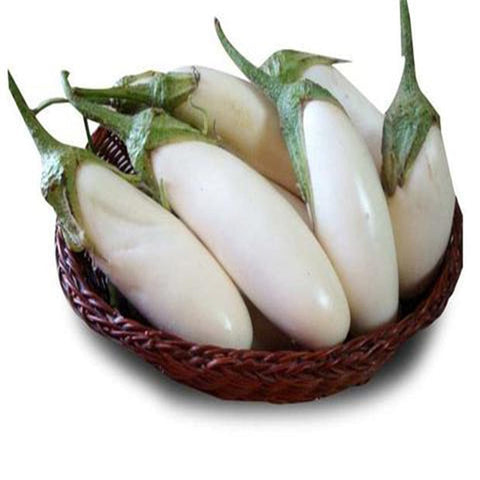 Brinjal white long seeds (Hybrid)