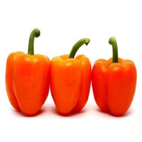 Capsicum orange Seeds(Hybrid)