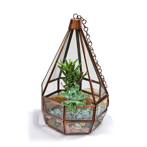 Best Indoor Plant Pots Online - Cone Tower Terrarium