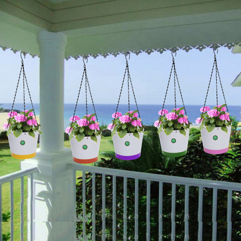 HANGING POTS & PLANTERS - Crown Hanging Flower Pots/Planters- Set of 5 (Green, Orange, Pink, Purple, Yellow)