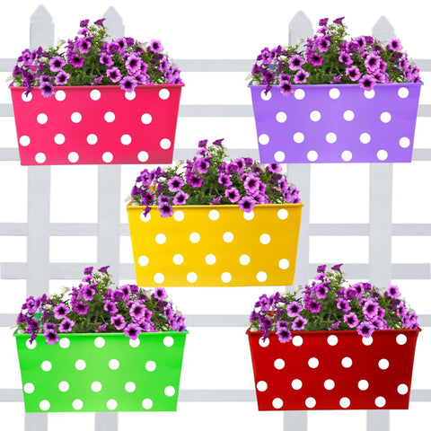DECORATIVE/CONTEMPORARY PLANT POTS - Rectangular Dotted Balcony Railing Garden Flower Pots/Planters - Set of 5 (Red, Yellow, Green, Magenta, Purple)