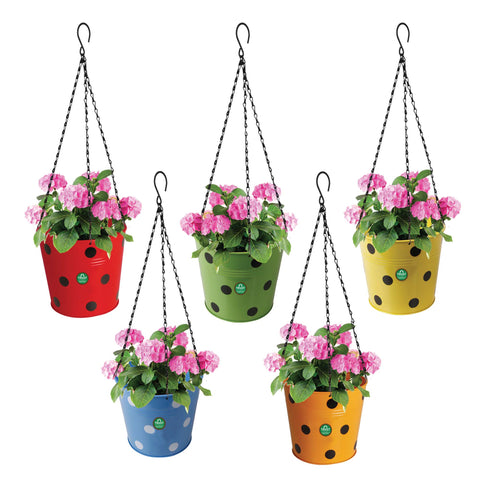 Hanging baskets, Hanging Pots & Planters in India - Dotted Round Hanging Basket - Set of 5 (Red, Yellow, Green, Orange, Blue)