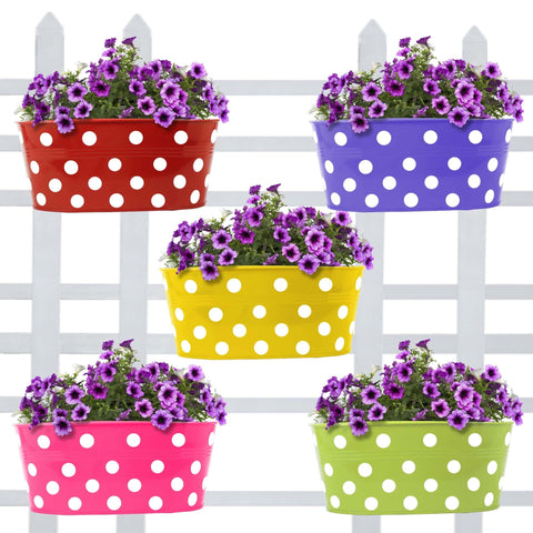 Best Metal Planters in India - Oval Balcony Railing Garden Flower Pots/Planters Dotted - Set of 5 (Red, Yellow, Green, Magenta, Purple)