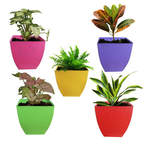 Indoor TableTop Planters - TrustBasket Set of 5 Colorful Floor Planter-Magenta,Yellow,Green,Purple and Red (12 Inch)
