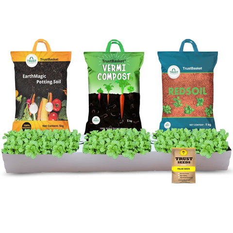 Vegetable gardening kits for Beginers - TrustBasket Palak Grow Kit