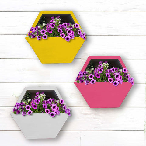 featured_mobile_products - Hexagon Wall Planters (Yellow, Ivory and Magenta) - Set of 3