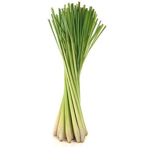 Lemon Grass seeds (Hybrid)