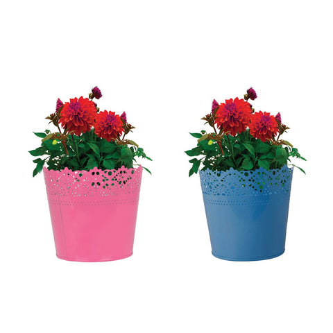 Indoor TableTop Planters - Set Of 2 - Half Lace finish Pink and Teal