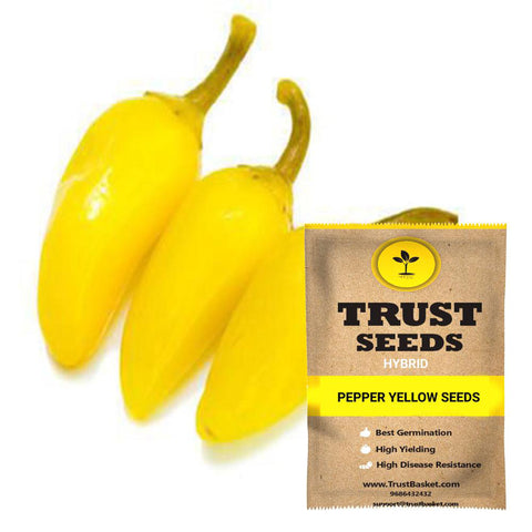 Buy Best Pepper Plant Seeds Online - Pepper yellow seeds (Hybrid)