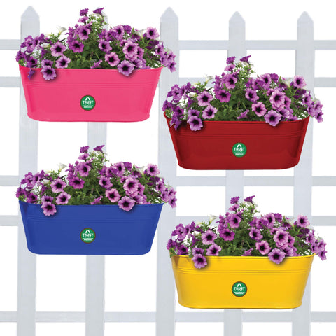 Best Balcony Railing Planters Pots in India - Oval railing planters (Magenta, Blue, Red and Yellow) - Set of 4