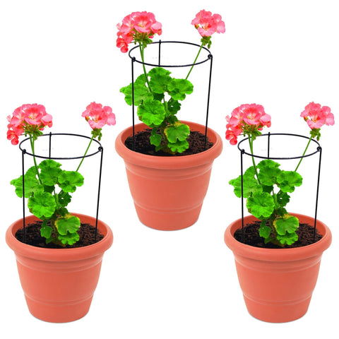 Accessories - Garden Trellis Plant Support - Set of 3